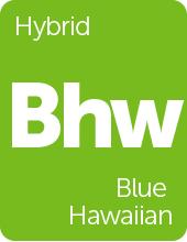 Leafly Blue Hawaiian cannabis strain tile