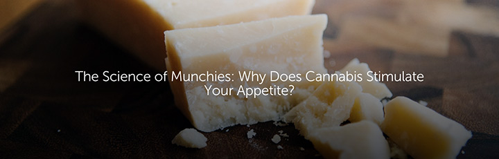 The Science of Munchies: Why Does Cannabis Stimulate Your Appetite?