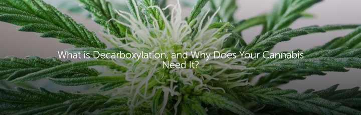 What is Decarboxylation, and Why Does Your Cannabis Need It?