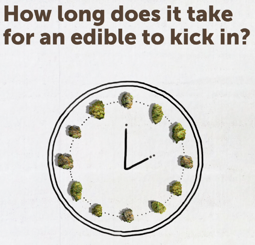 How long does it take for an edible to kick in?