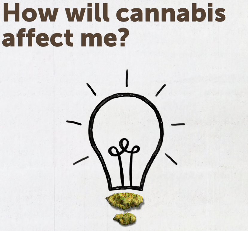 How will cannabis affect me?
