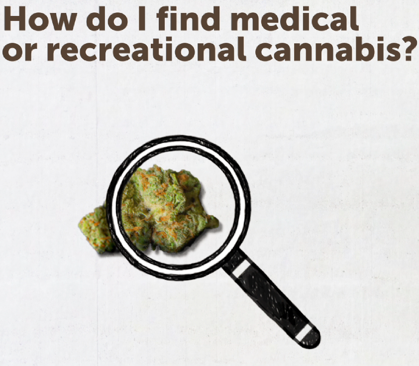 How do I find medical or recreational cannabis?