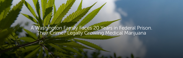A Washington Family Faces 20 Years in Federal Prison. Their Crime? Legally Growing Medical Marijuana