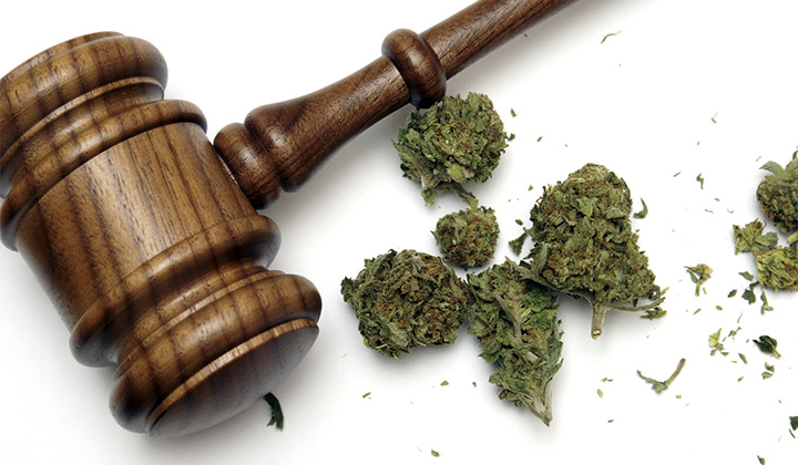 Gavel with cannabis