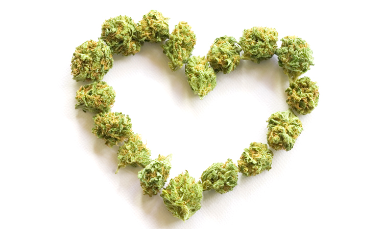 Heart made with cannabis flowers