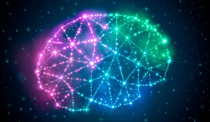 Brain constellation