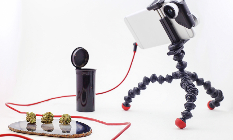 An iPhone with a macro lens attached mounted on a GorillaPod yripod pointed at cannabis flower