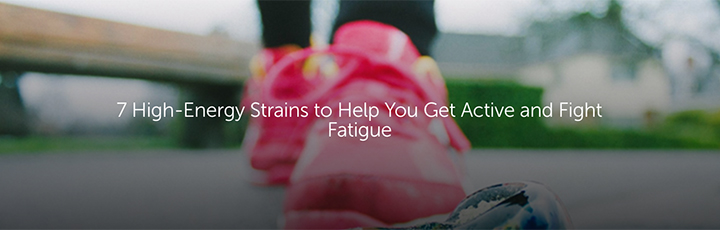 7 High-Energy Strains to Help You Get Active and Fight Fatigue