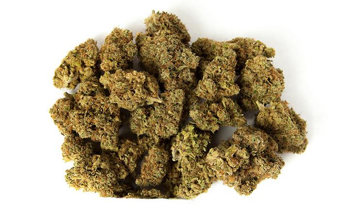 Pile of cannabis