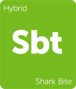 Leafly Shark Bite hybrid cannabis strain tile