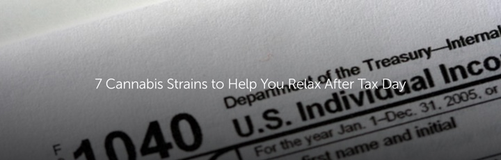 7 Cannabis Strains to Help You Relax After Tax Day
