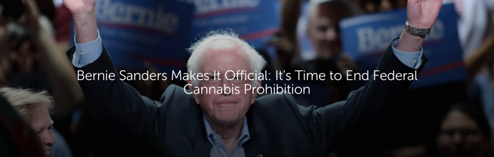 Bernie Sanders Makes It Official: It's Time to End Federal Cannabis Prohibition