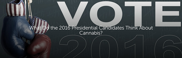 What Do the 2016 Presidential Candidates Think About Cannabis?