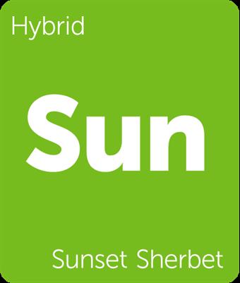 Leafly Sunset Sherbet cannabis strain tile