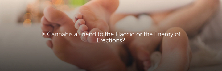 Is Cannabis a Friend to the Flaccid or the Enemy of Erections?