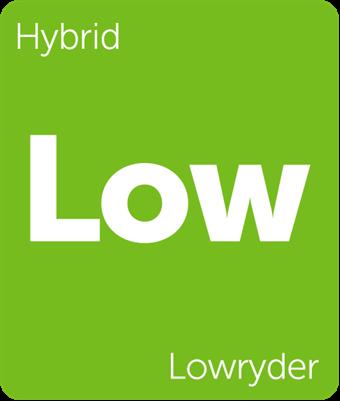 Leafly Lowryder hybrid cannabis strain tile