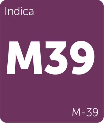 Leafly indica M-39 cannabis strain tile