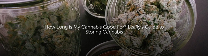 How Long is My Cannabis Good For? Leafly's Guide to Storing Cannabis