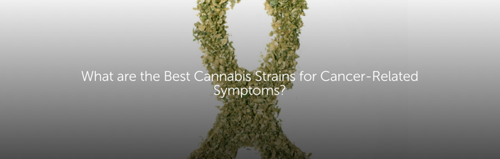 What are the Best Cannabis Strains for Cancer-Related Symptoms?