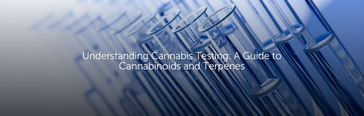 Understanding Cannabis Testing: A Guide to Cannabinoids and Terpenes