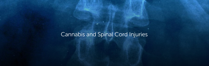 Cannabis and Spinal Cord Injuries