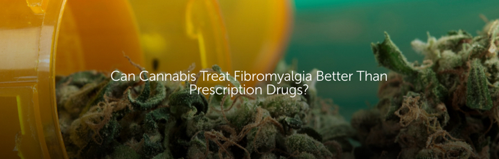 Can Cannabis Treat Fibromyalgia Better Than Prescription Drugs?