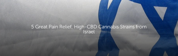 5 Great Pain Relief, High-CBD Cannabis Strains From Israel