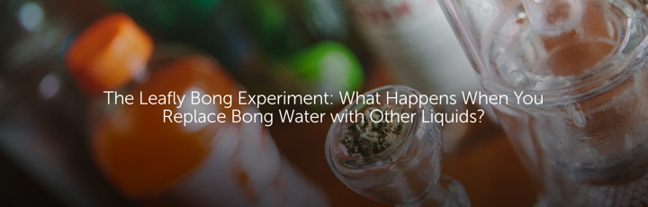 The Leafly Bong Experiment: What Happens When You Replace Bong Water with Other Liquids?
