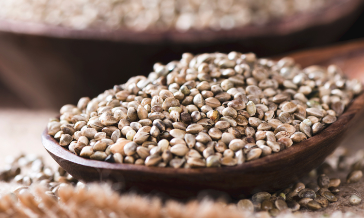 marijuana seeds in wooden bowl