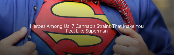 Heroes Among Us: 7 Cannabis Strains That Make You Feel Like Superman