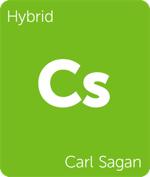 Leafly hybrid Carl Sagan cannabis strain tile