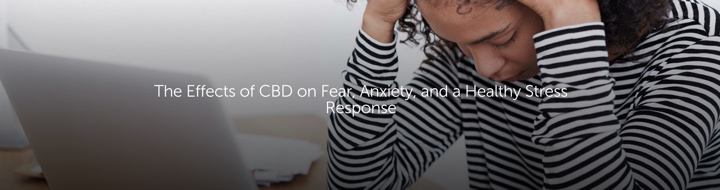 The Effects of CBD on Fear, Anxiety and a Healthy Stress Response
