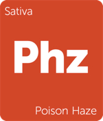 Leafly sativa Poison Haze cannabis strain tile