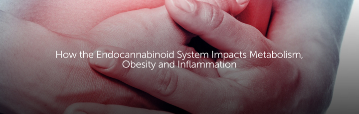 How the Endocannabinoid System Impacts Metabolism, Obesity and Inflammation