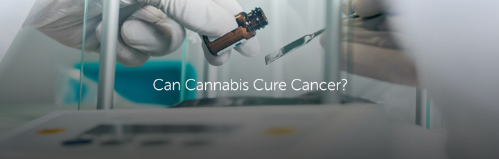 Can Cannabis Cure Cancer?