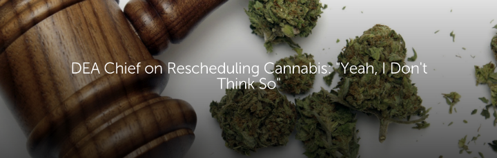 "DEA Chief on Rescheduling Cannabis: ""Yeah, I Don't Think So"""