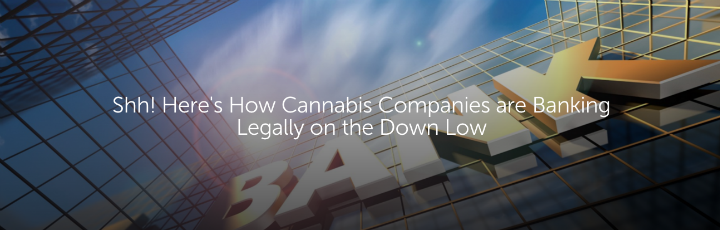 Shh! Here's How Cannabis Companies Are Banking Illegally on the Down Low