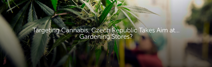 Targeting Cannabis, Czech Republic Takes Aim at… Gardening Stores?