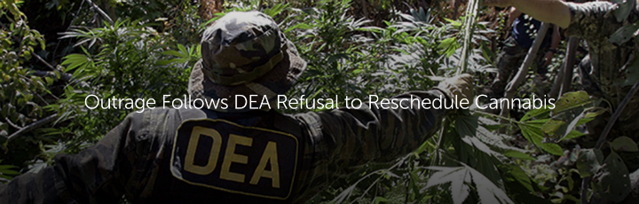 BREAKING: Outrage Follows DEA Refusal to Reschedule Cannabis