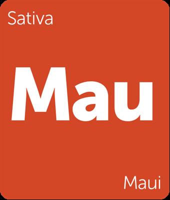 Leafly Maui sativa cannabis strain tile