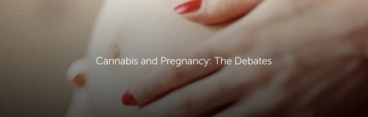 Cannabis and Pregnancy: The Debates