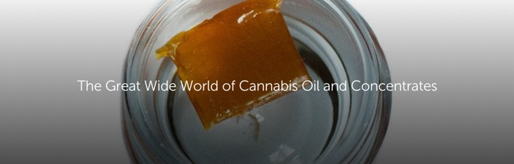 The Great Wide World of Cannabis Oil and Concentrates