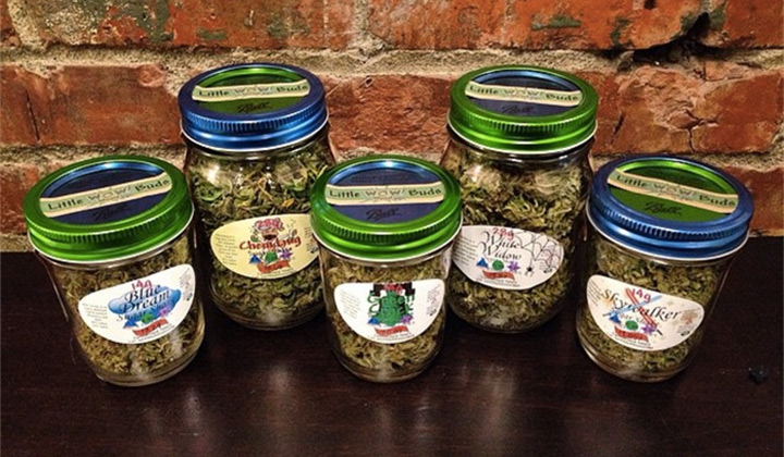 Jars of cannabis buds
