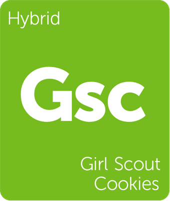 GSC (f.k.a Girl Scout Cookies) hybrid cannabis strain tile