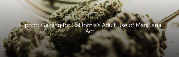 Support Gaining for California's Adult Use of Marijuana Act
