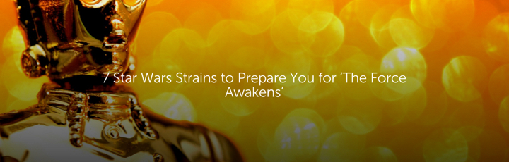7 Star Wars Strains to Prepare You for 'The Force Awakens'
