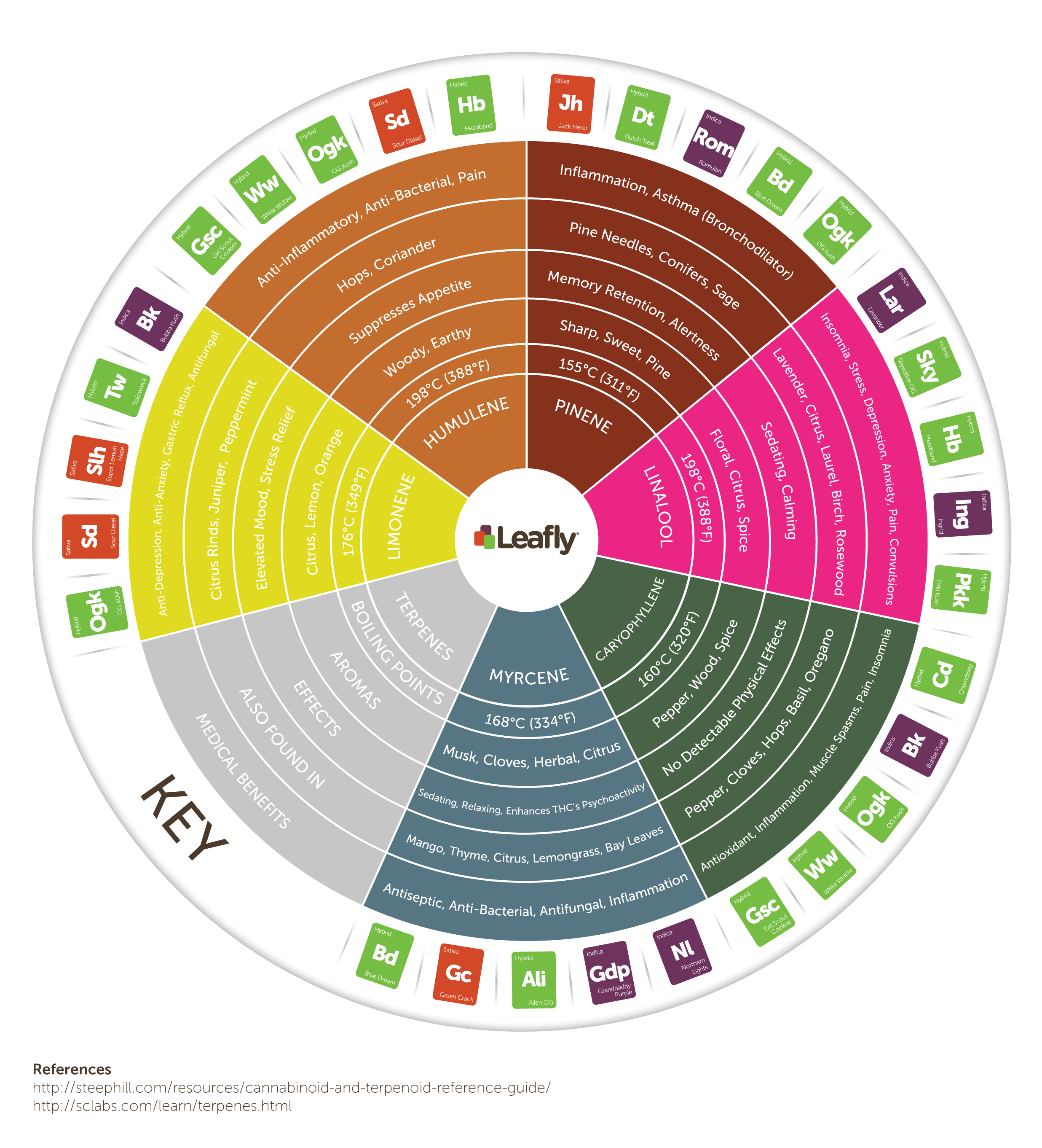 Leafly cannabis terpene wheel infographic
