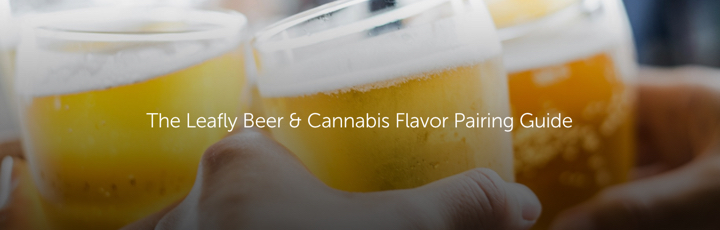The Leafly Beer & Cannabis Flavor Pairing Guide