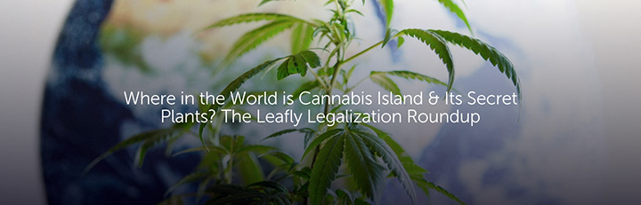 Where in the World is Cannabis Island & Its Secret Plants? The Leafly Legalization Roundup