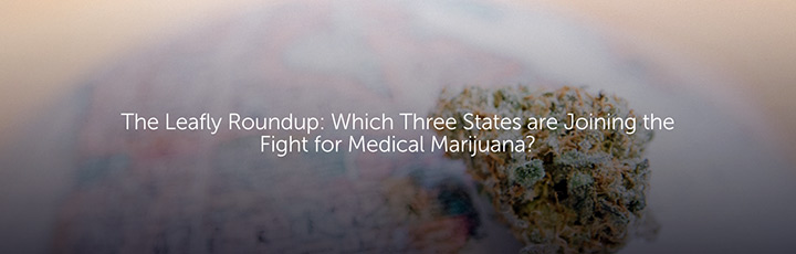 The Leafly Roundup: Which Three States are Joining the Fight for Medical Marijuana?